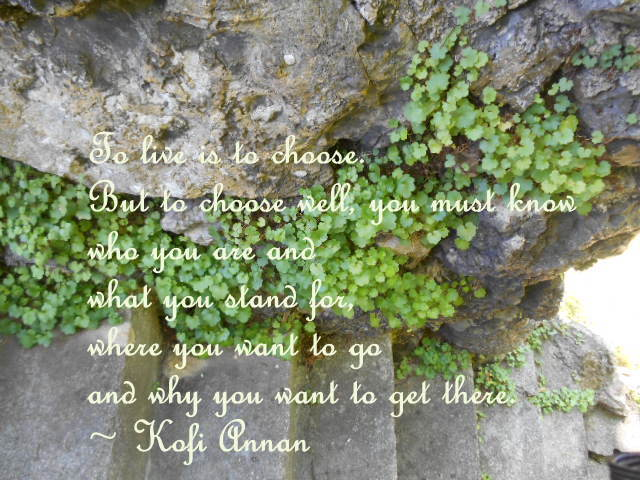 To live is to choose - Kofi Annan